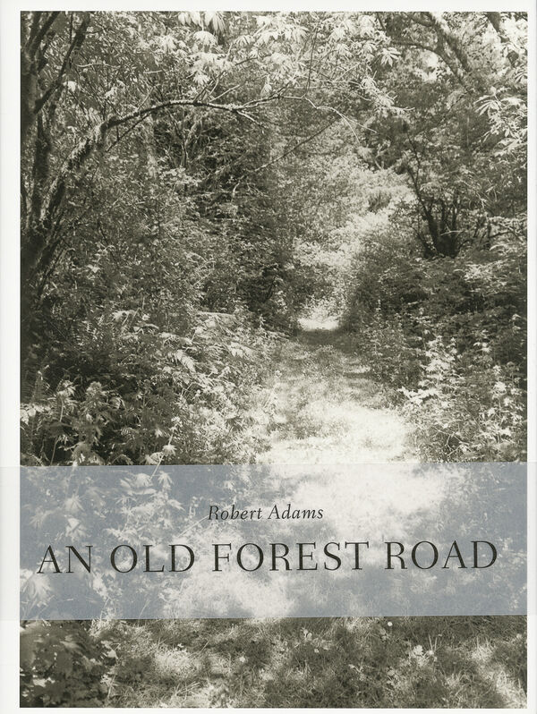 Robert Adams – An Old Forest Road